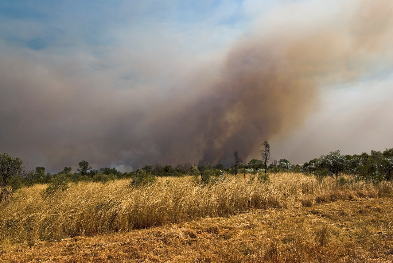 Brush Fire 9 - Kimberly Region, Western Australia
