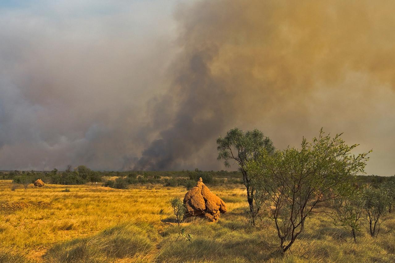 Brush Fire 5 - Kimberly Region, Western Australia