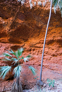 Exposed Red Sandstone, Echnida Chasm, Purnululu National Park - Western Australia