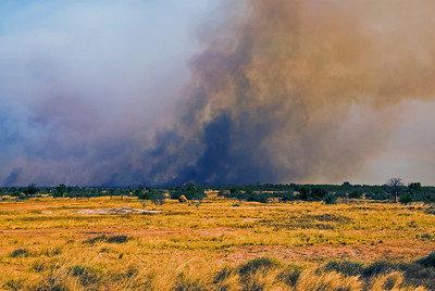 Brush Fire 7 - Kimberly Region, Western Australia