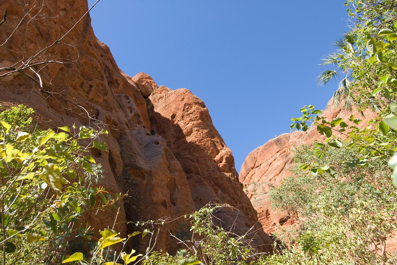 Echnida Chasm Entrance 3, Purnululu National Park - Western Australia