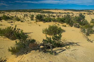 Pinnacle Desert 7 - Western Australia