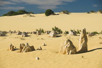 Pinnacle Desert 15 - Western Australia