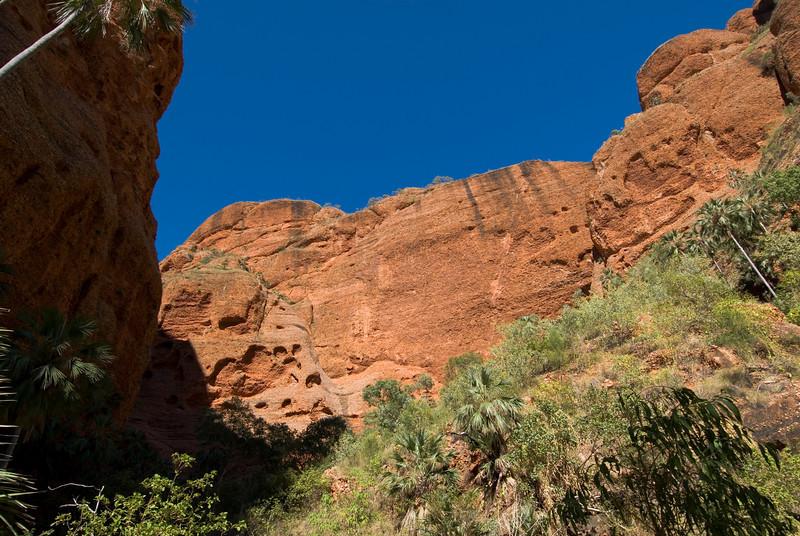 Echnida Chasm Entrance 2, Purnululu National Park - Western Australia