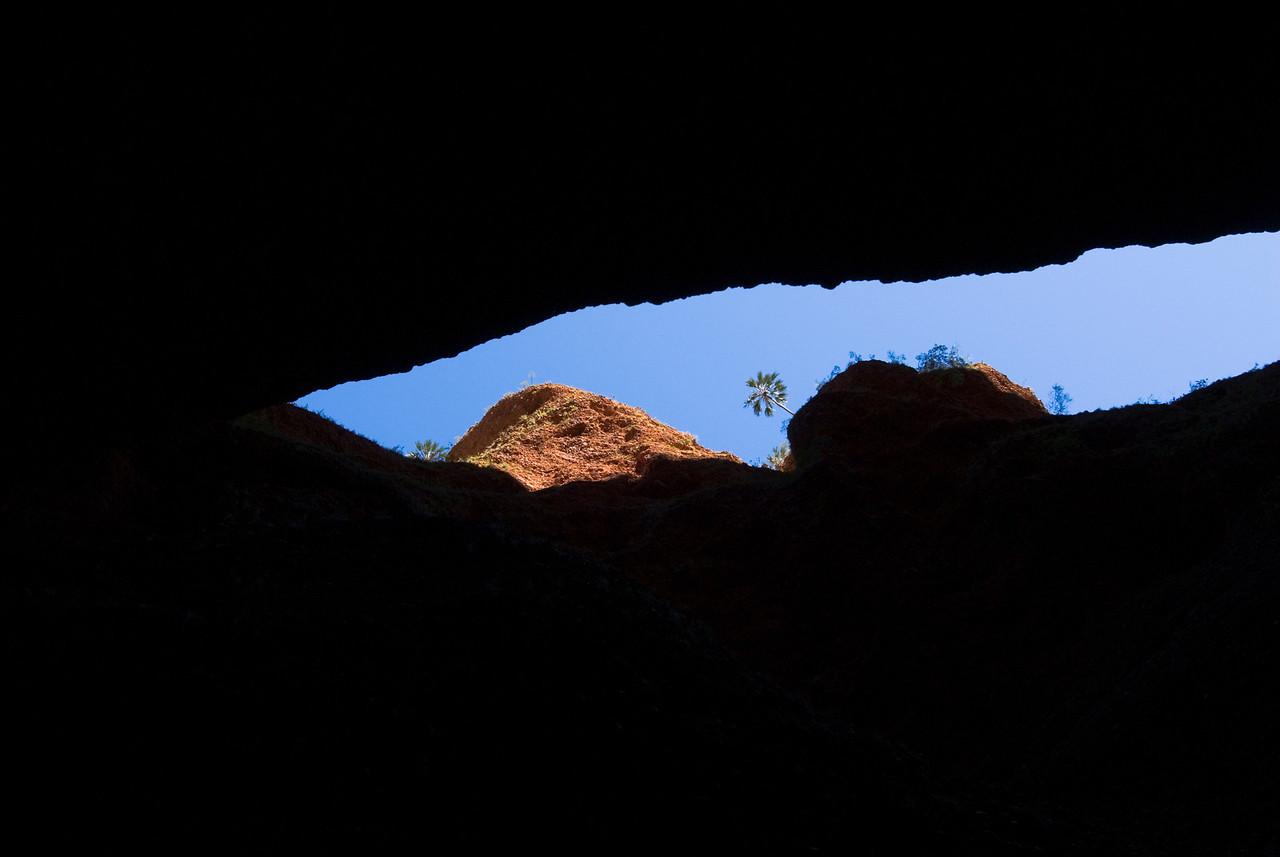 Looking Up, Echnida Chasm, Purnululu National Park - Western Australia