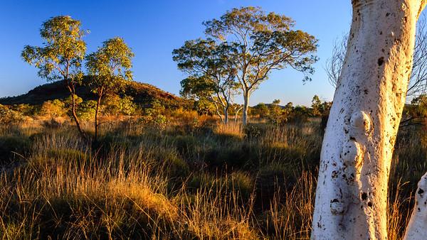 Karinji National Park, Pilbara - Australia