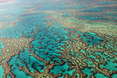 Heart Reef, Hardy Reef, Whitsunday Islands, Queensland, Australia