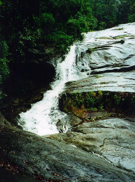 2000_Cairns_Jungle_Waterfall