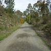 Walking Trail Clare Valley