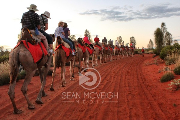 Touring on a Camel