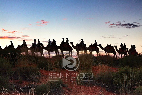 Sunrise parade in the Outback