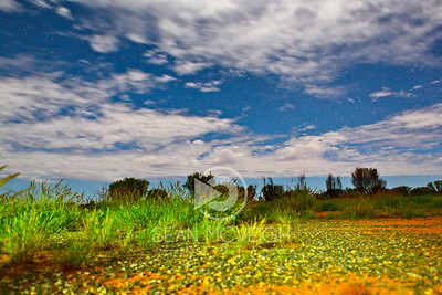 Stunning landscape in the Australian Outback