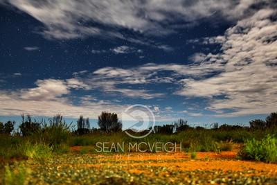 Pre-Dawn Starlight in the Outback