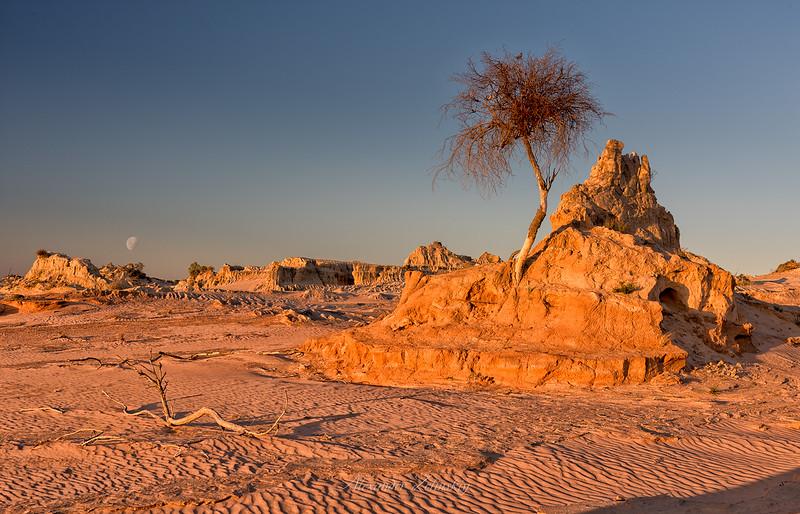 Mungo Desert Moonrising