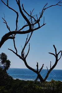 Australia, Melbourne, Great Ocean Road