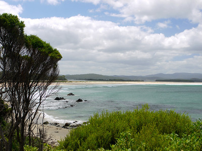 Australia: Merimbula Oysters, Mallacoota, and Metung