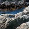 RTW Trip - Abel Tasman NP, New Zealand