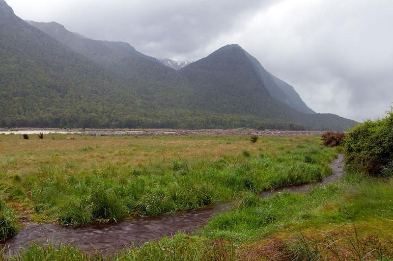 RTW Trip - Milford Sounds, New Zealand