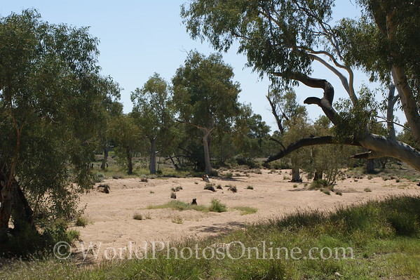 Alice Springs - Todd River (Normal)