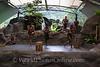 Cairns - Tjapukai Aboriginal Cultural Park - Dance Theatre
