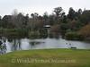 Melbourne - Botanical Gardens 1