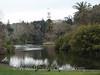 Melbourne - Botanical Gardens 2