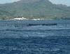 Bora Bora - Lagoon Fish Trap