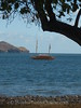 Marquesas - Nuku Hiva - Taiohae  Bay - Recreation of Interisland Boat for Festival 2