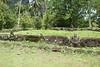 Marquesas - Nuku Hiva - Hikoku archaeological site - Main Ceremonial Platform & tiki (statues)