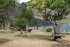 Marquesas - Nuku Hiva -Taiohae - Festival Grounds - Tikis