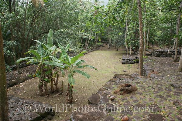 Marquesas - Nuku Hiva - Kamuihei archaeological site - tohua (public square) 1