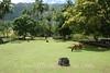Marquesas - Nuku Hiva - Hikoku archaeological site - tohua (public square) 2