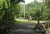 Tahiti - Marae Arahurahu 1