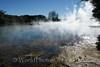 Rotorua - Kuirau Park - Hot Pool