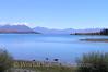 South Island - Lake Tekapo S