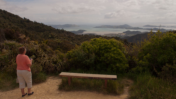 Elspeth to Auckland 52 (Scenic Lookout view of Coromandel Viv)