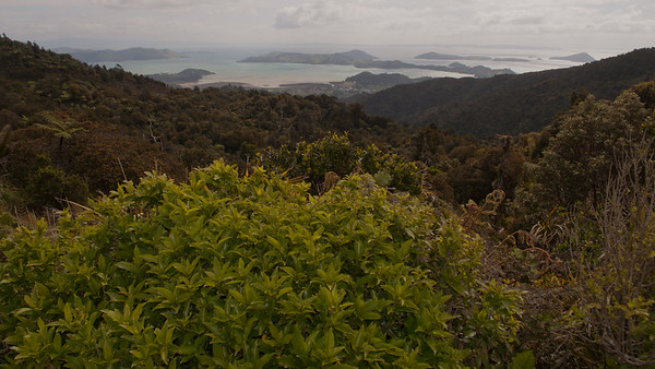Elspeth to Auckland 51 (Scenic Lookout view of Coromandel)