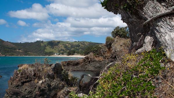 Elspeth to Auckland 49 (Kuaotuna Beach)