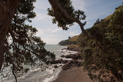 Elspeth to Auckland 62 (Coromandel West Coast)