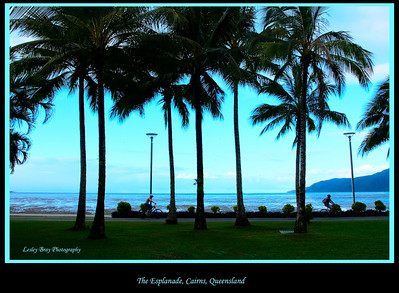 Cairns Esplanade in the late afternoon, Queensland, Australia.   Photographed July 2010 - © Lesley Bray Photography