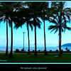 Cairns Esplanade in the late afternoon, Queensland, Australia. <br /> <br /> Photographed July 2010 - © Lesley Bray Photography