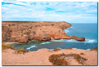 While Victoria's Great Ocean Road is more spectacular there is nothing unspectacular about Elliston's Great Ocean Drive. Cliffs overlooking Waterloo Bay at Elliston, South Australia.  Photographed February 2012 - © 2012 Lesley Bray Photography - All Rights Reserved.