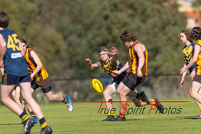 S F#1_N Confrence_Red_Comp_Sorrento_Duncraig_Hawks_vs_Swanbourne_Tigers_02 09 2018-3