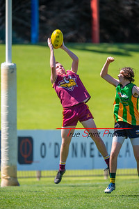 Preliminary_Final_Northern_Conference_18s_Red_Scarborough_Green_vs_Quinns_Bulls_08 09 2019-6