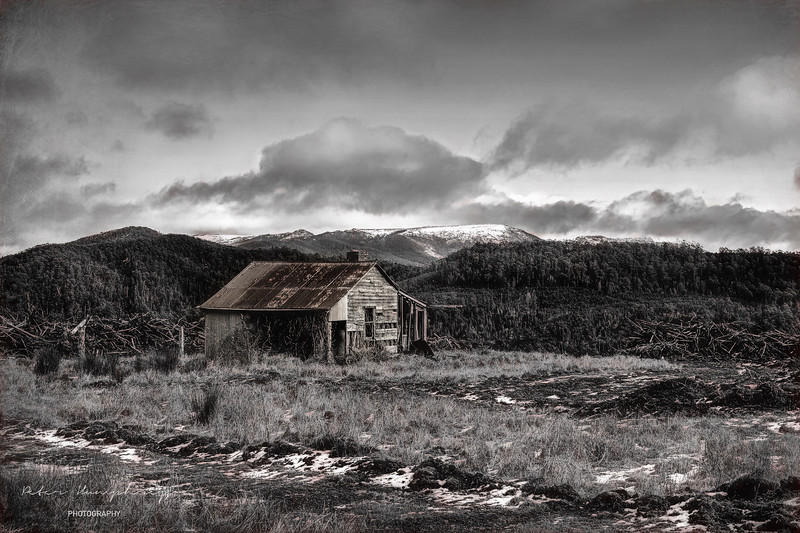 Wood cutters hut tasmania