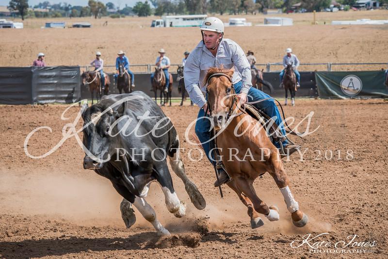ASHN Stallions-0046