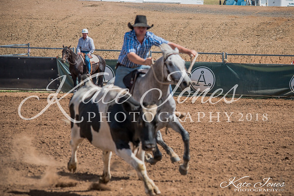 ASHN Stallions-0021
