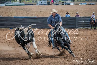 ASHN Stallions-0038