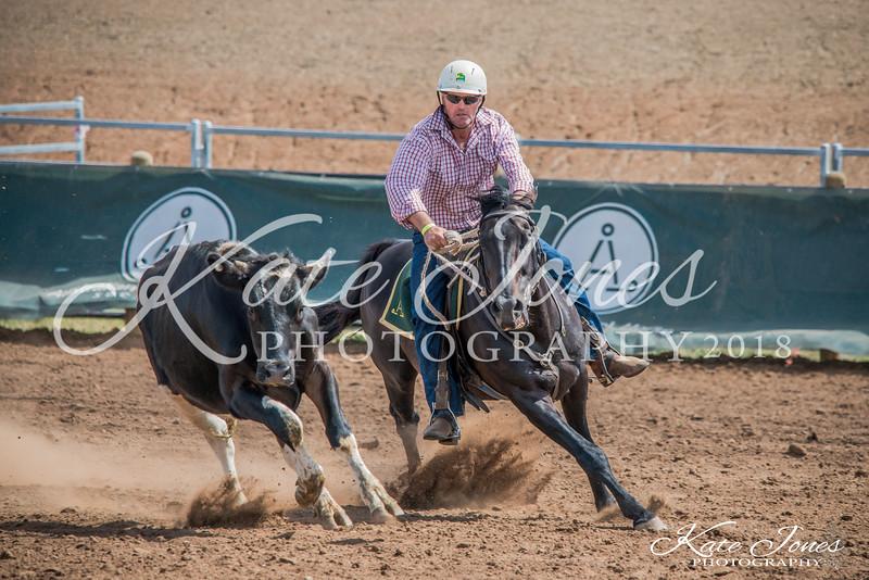 ASHN Stallions-0033