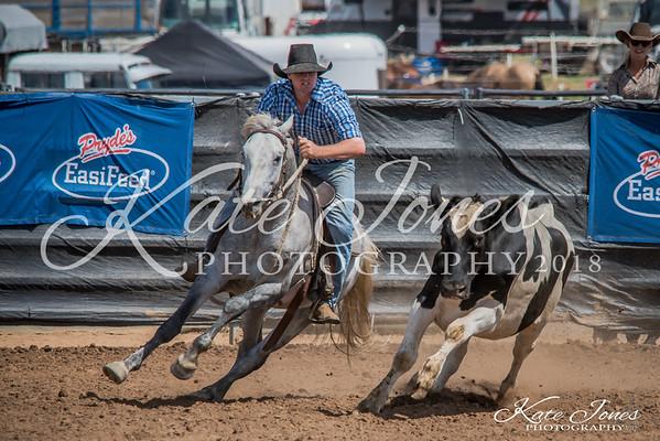 ASHN Stallions-0026